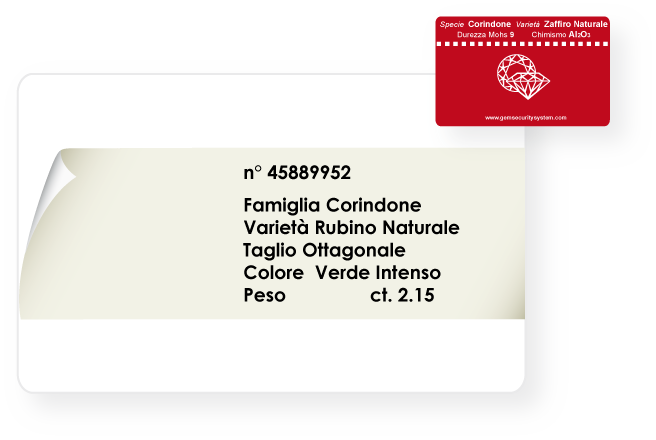 stampa su card B-R label